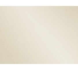 Radna ploča Sjaj Sahara 47981 GL - 600 mm